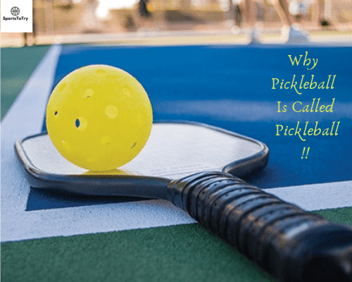 How did pickleball get its name. 1