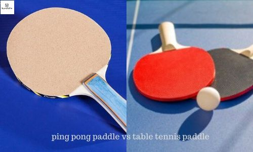 Ping pong paddle vs table tennis paddle