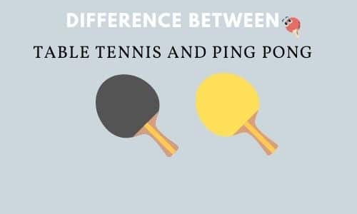 Difference Between Table Tennis and Ping Pong (Watch Videos)