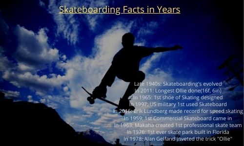 skate facts